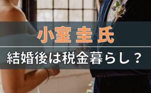 小室圭氏の結婚後は税金暮らしなのか